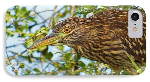 Herring Run Heron IPhone Case by CapeScapes Fine Art Photography