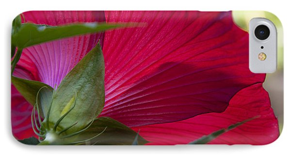 IPhone Case featuring the photograph Hibiscus by Charles Harden