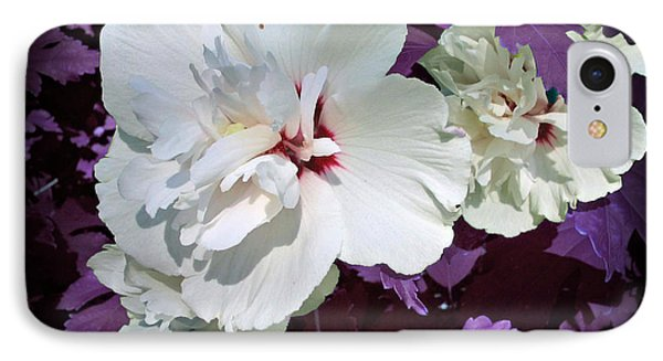 IPhone Case featuring the photograph Hibiscus - Circa 2006 Saratoga, Ny by Iowan Stone-Flowers