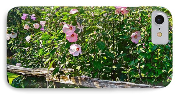 Hibiscus Hedge IPhone Case by Randy Rosenberger