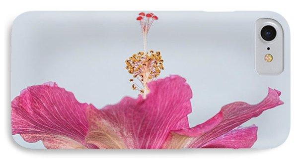 Hibiscus Looking Upward IPhone Case