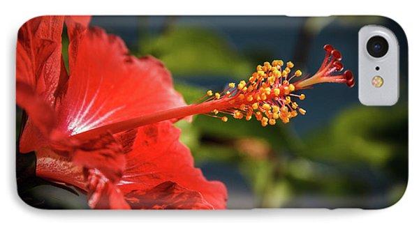 Hibiscus Macro IPhone Case by Robert Bales