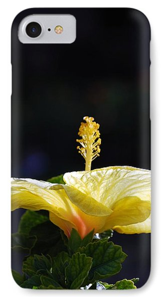 IPhone Case featuring the photograph Hibiscus Morning by Debbie Karnes