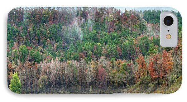 Hickory Forest IPhone Case by Tim Fitzharris