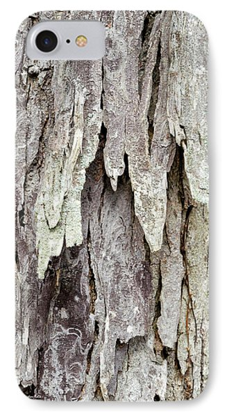 IPhone Case featuring the photograph Hickory Tree Bark Abstract by Christina Rollo