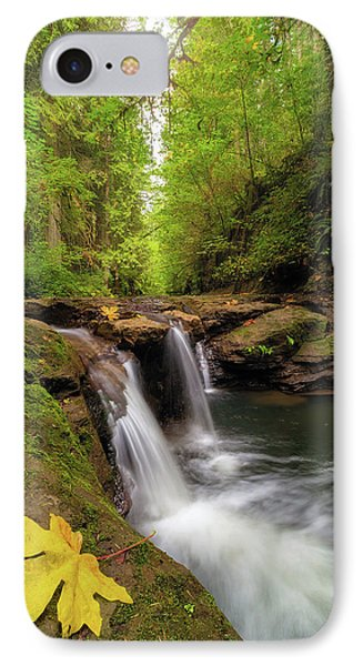 Hidden Falls At Rock Creek Phone Case by David Gn