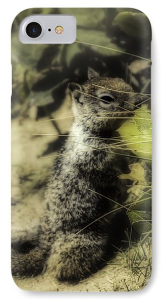 IPhone Case featuring the photograph Hiding In Plain Sight by Diane Schuster