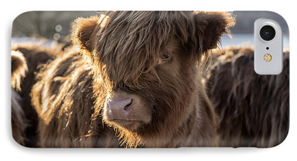 Highland Baby Coo IPhone Case