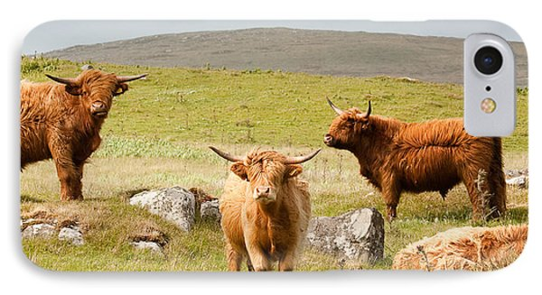 Highland Cattle Phone Case by Colette Panaioti