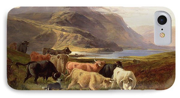 Highland Cattle With A Collie IPhone Case by Joseph Adam