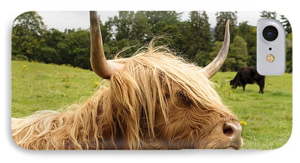 IPhone Case featuring the photograph Highland Coo by Christi Kraft
