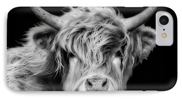 Highland Coo IPhone Case by Linsey Williams