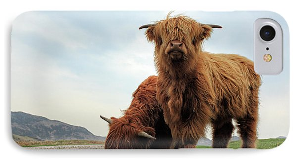 Cow iPhone 7 Case - Highland Cow Calves by Grant Glendinning