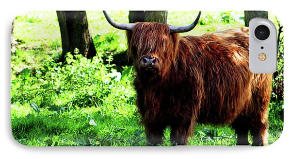 Highland Cow Phone Case by Dan Pearce