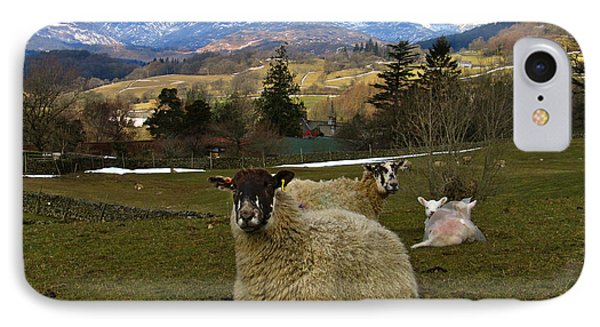 IPhone Case featuring the photograph Hill Sheep by RKAB Works
