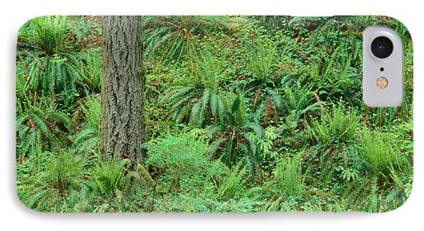 Hillside Ferns Phone Case by Greg Vaughn - Printscapes