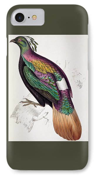 Himalayan Monal Pheasant IPhone Case by John Gould