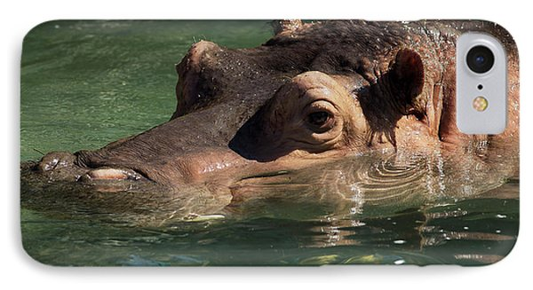 IPhone Case featuring the photograph Hippopotamus In Water by JT Lewis