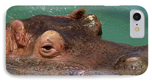 IPhone Case featuring the photograph Hippopotamus by JT Lewis