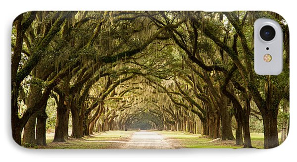 Historic Live Oak Trees IPhone Case by Lamarre Labadie