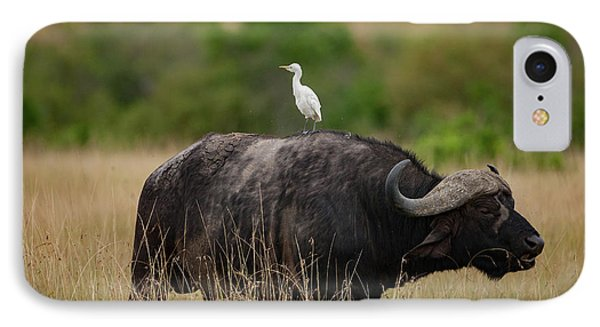 Hitching A Ride IPhone Case by Nichola Denny