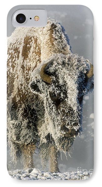 Hoarfrosted Bison In Yellowstone Phone Case by Sandra Bronstein