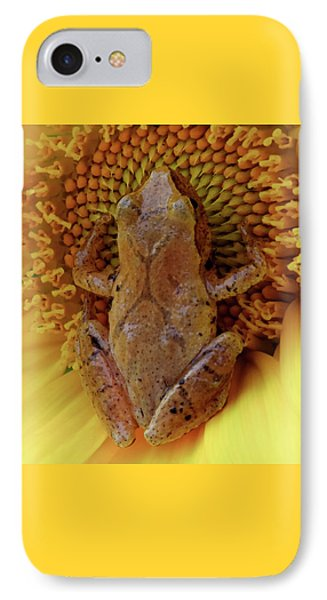 Holding On To Summer IPhone Case by Karen Wiles