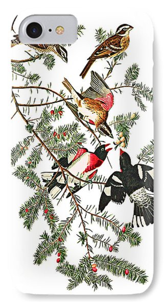 IPhone Case featuring the photograph Holiday Birds by Munir Alawi
