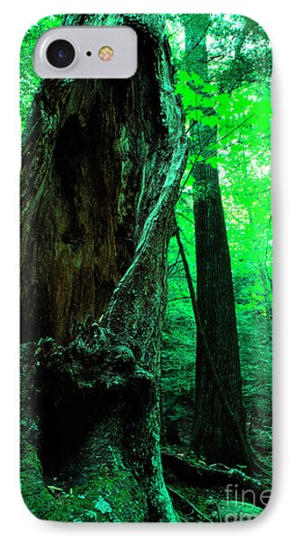 Hollow Maple Tree Phone Case by Thomas R Fletcher