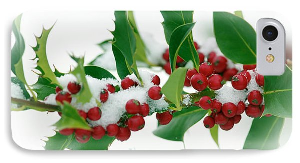 IPhone Case featuring the photograph Holly Berries On White by Sharon Talson