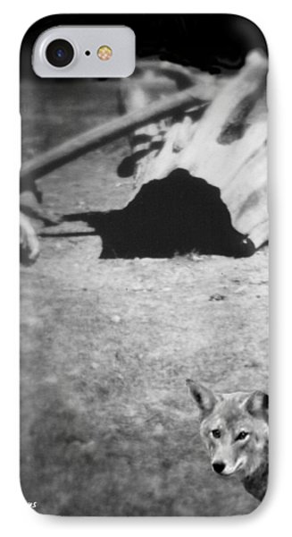 Homage To Josef Beuys IPhone Case by Ann Tracy