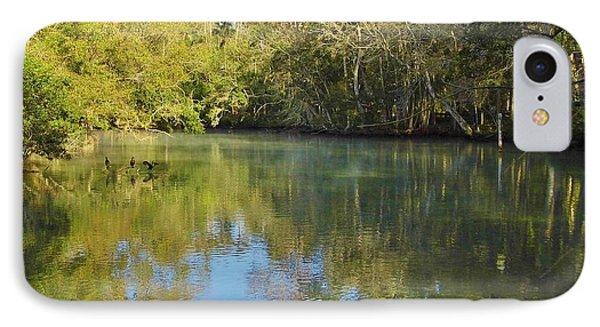 Homosassa River IPhone Case by D Hackett