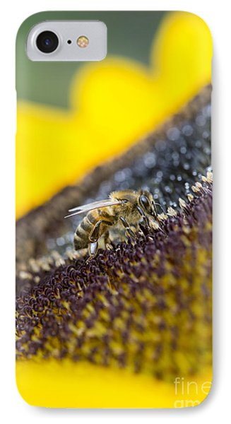 Honey Bee IPhone Case by Tim Gainey