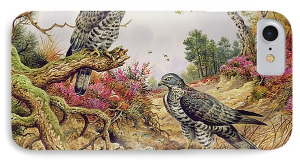 Honey Buzzards IPhone Case by Carl Donner