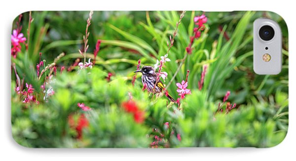Honey Eater, Bushy Lakes IPhone Case by Dave Catley