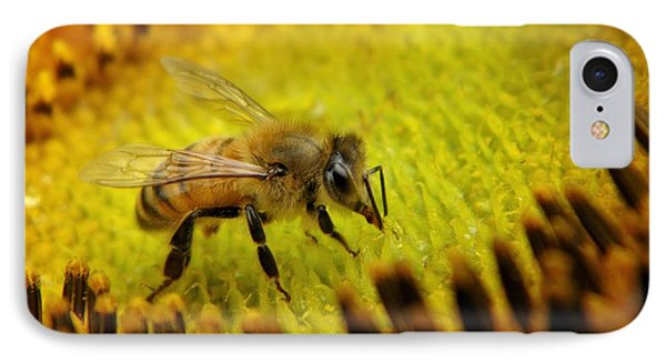 IPhone Case featuring the photograph Honeybee On Sunflower by Chris Berry