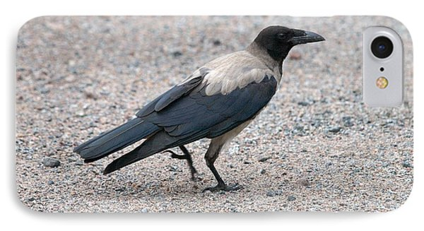 IPhone Case featuring the photograph Hooded Crow by Jouko Lehto