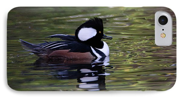 Hooded Merganser Duck IPhone Case by Keith Boone