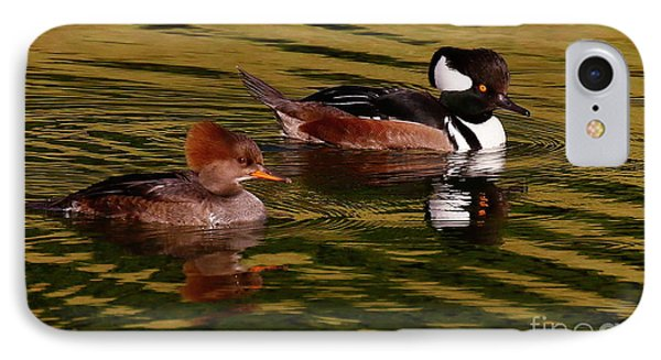 Hooded Merganser Couple IPhone Case