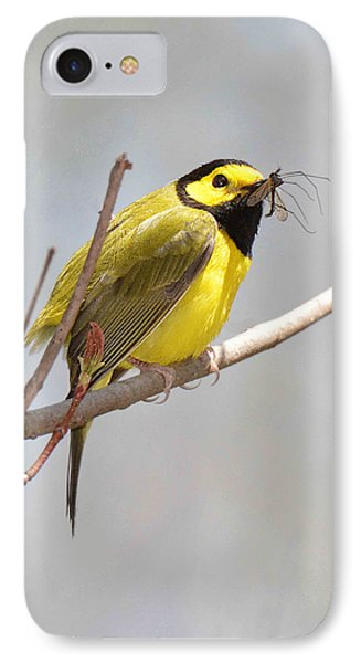 Hooded Warbler With Bug IPhone Case