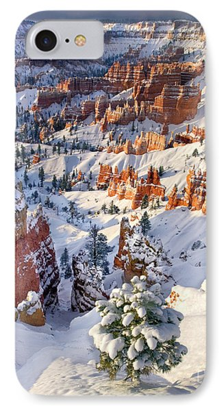 IPhone Case featuring the photograph Hoodoos And Fir Tree In Winter Bryce Canyon Np Utah by Dave Welling