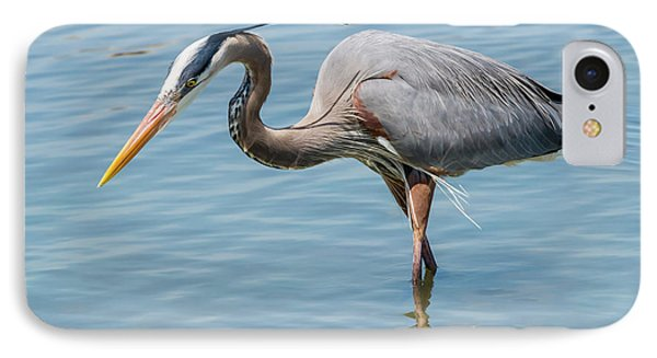 Hooper's Island - Great Blue Heron IPhone Case by Brian Wallace