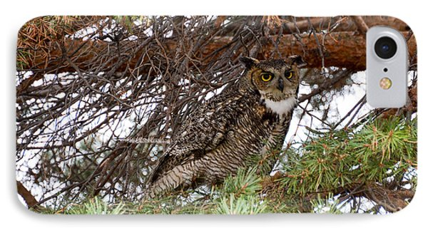 Hoot Owl IPhone Case
