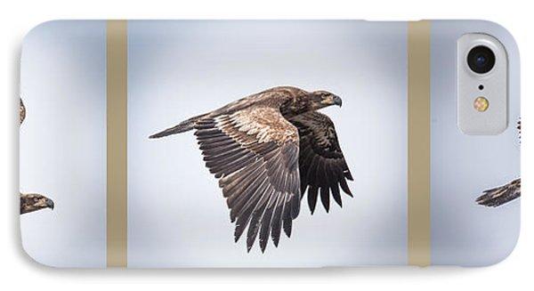 Horizontal Eagle Triptych IPhone Case by Paul Freidlund