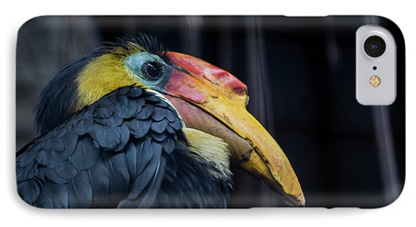 IPhone Case featuring the photograph Hornbilled Bird by Scott Lyons
