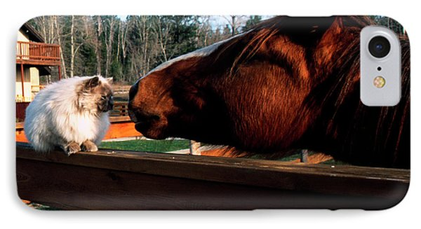 Horse And Cat Nuzzle Phone Case by Thomas R Fletcher