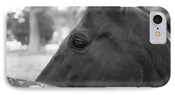 Horse At Fence IPhone Case