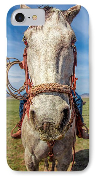Horse Head IPhone Case by Todd Klassy