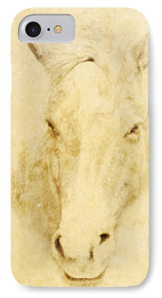 Horse  IPhone Case by Jeremy Martinson