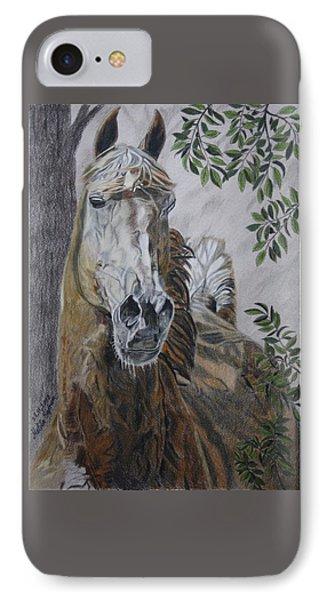 Horse IPhone Case by Melita Safran